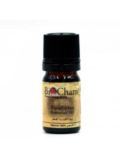 Эфирное масло эвкалипта BIO CHAM