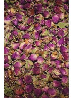 Дикая роза , Сирия